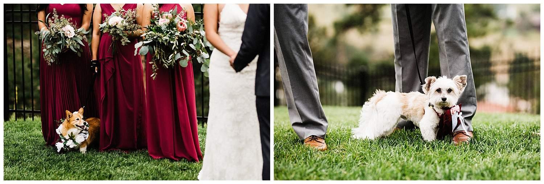estes_park_wedding_0235.jpg