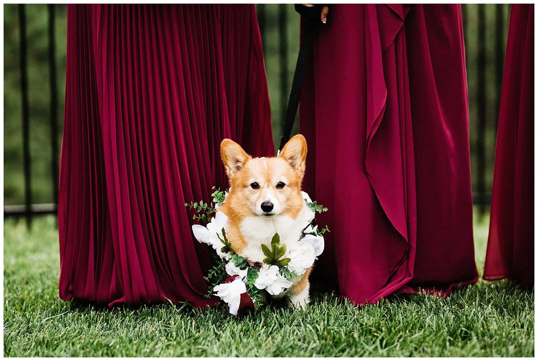 estes_park_wedding_0236.jpg